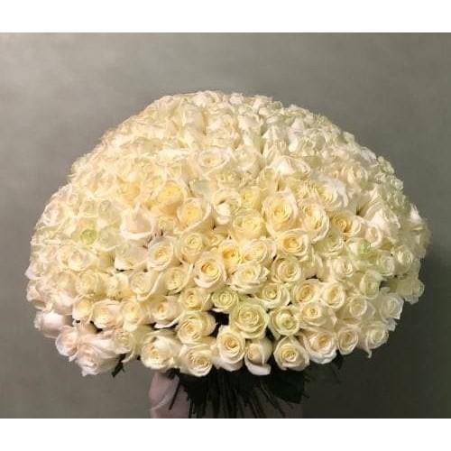 Купить на заказ Заказать 201 роза с доставкой по Аркалыку с доставкой в Аркалыке