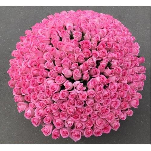 Купить на заказ Заказать 501  роза с доставкой по Аркалыку с доставкой в Аркалыке